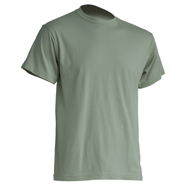 Футболка 'JHK' 'REGULAR PREMIUM T-SHIRT' PALE GREEN